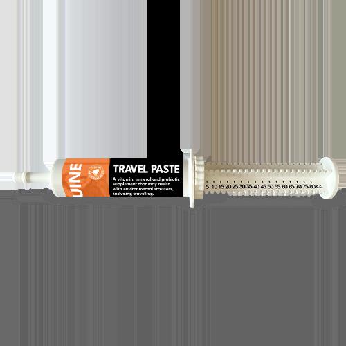 Travel Paste